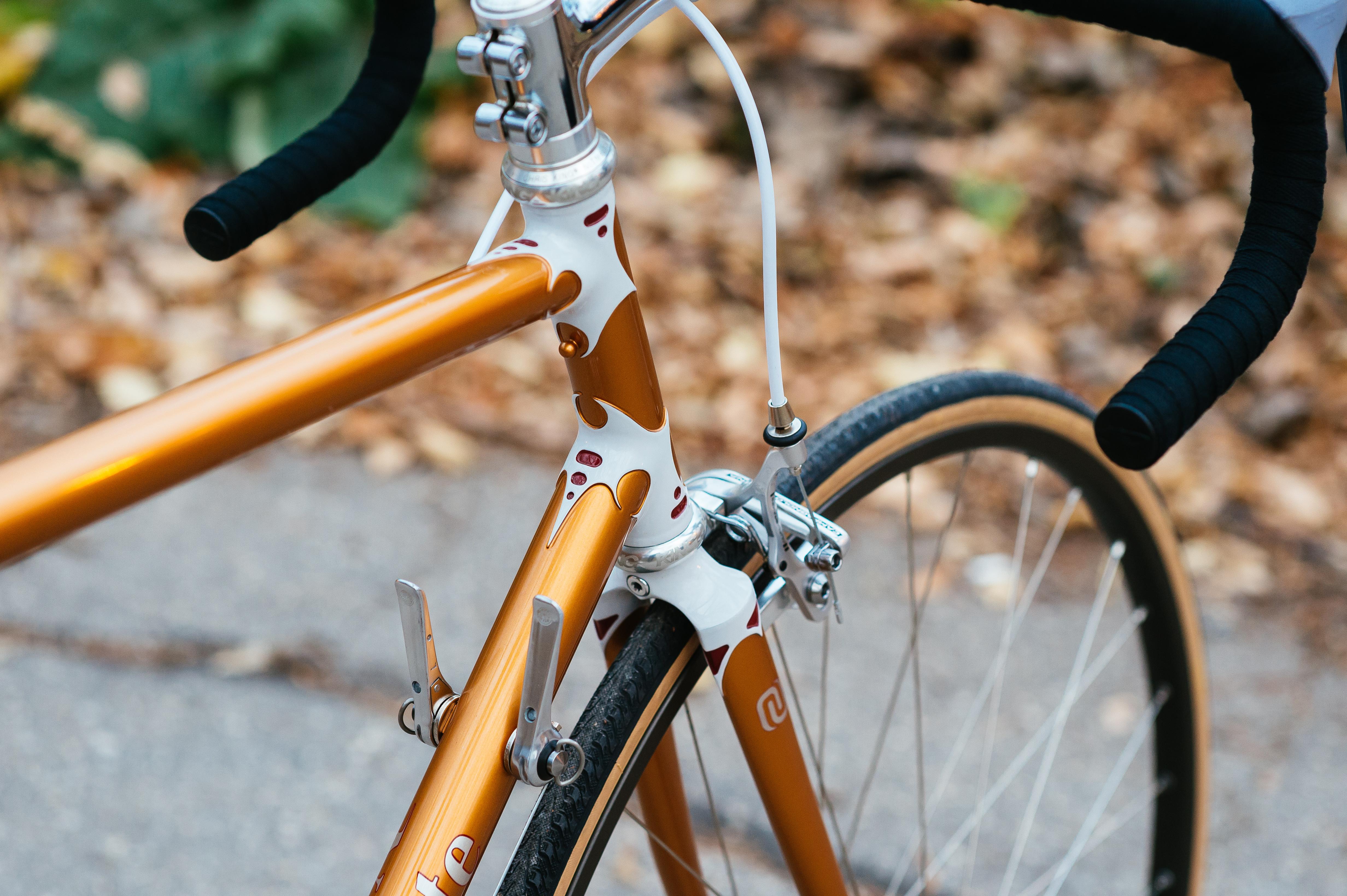 Natural Cycle Oct2014-130